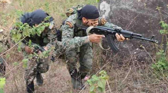सुरक्षाबलों का ऑपरेशन जारी, एक और खूंखार नक्सली को उतारा मौत के घाट
