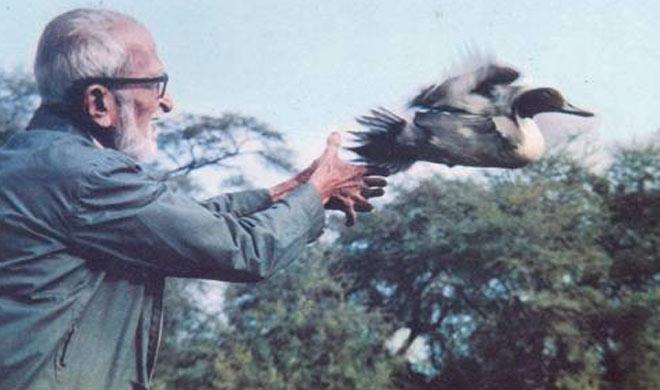 BirdMan Death Anniversary: परिंदों से बात करने वाले डॉ. सलीम का चिड़ियों से था अनमोल रिश्ता