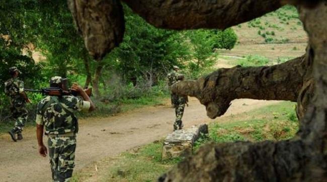 naxal, chhattisgarh naxal, dantewada naxal, Naxalite killed in encounter, DRG Jawan, sirf sach, sirfsach.in