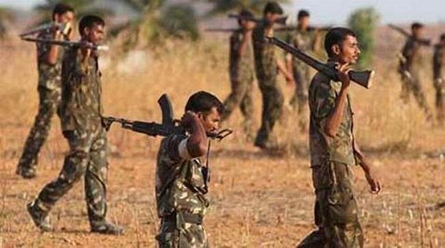 छत्तीसगढ़ के नारायणपुर में एनकाउंटर, सुरक्षाबलों ने मार गिराए 5 नक्सली