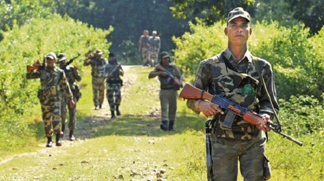 naxali, Operation monsoon against Naxalites, Sukma in Chhattisgarh, Police, naxal, sirf sach, sirfsach.in, नक्सलियों के खिलाफ ऑपरेशन मानसून, छत्तीसगढ़ में नक्सली, मारे गए नक्सली, पुलिस और सुरक्षा बल, सिर्फ सच