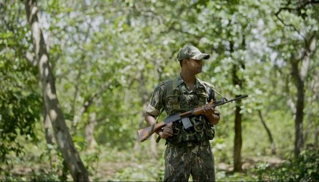 महाराष्ट्र: गढ़चिरौली में सुरक्षाबलों ने नक्सलियों की बड़ी साजिश को किया नाकाम