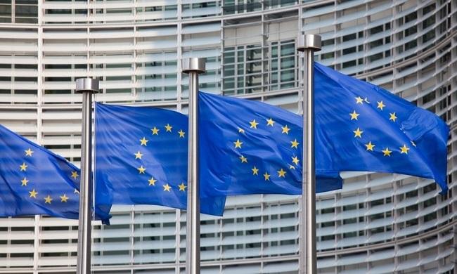 यूरोपीय संसद में भारत की कूटनीतिक जीत, CAA पर नहीं हुआ मतदान